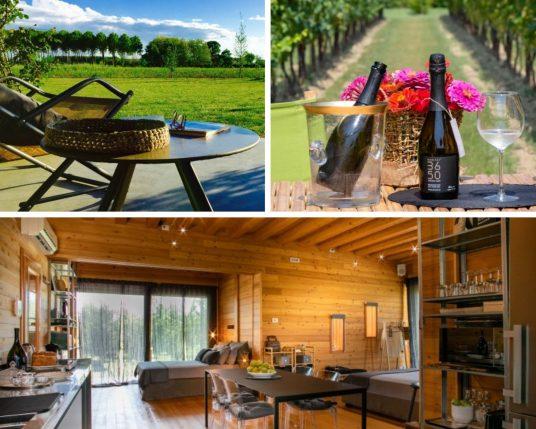 Agriturismo Eco Cabin in Organic Farm