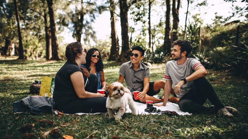 Picnic con amici e un cagnolino. Attività per una vacanza sostenibile