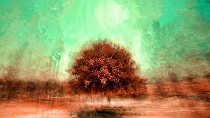 Arte visiva - Albero in un campo