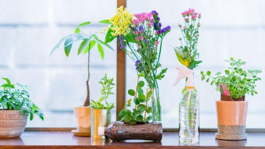 bottiglie di acqua e sassi usati come vasi