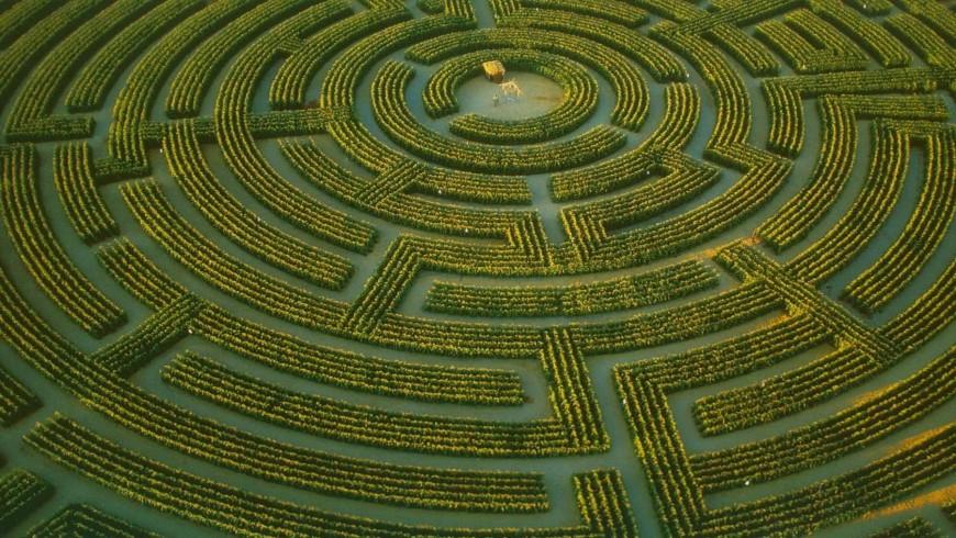 Il labirinto di Reignac-sur-Indre tra i labirinti più belli della Francia
