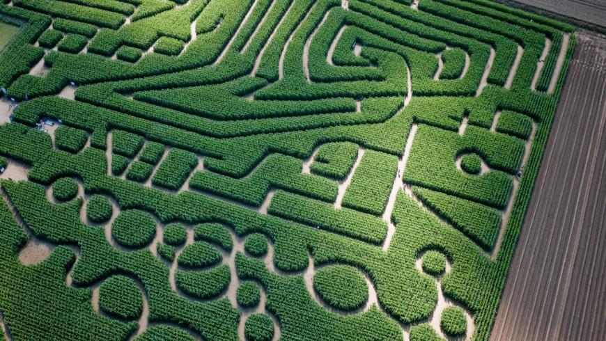 Il labirinto di Caen