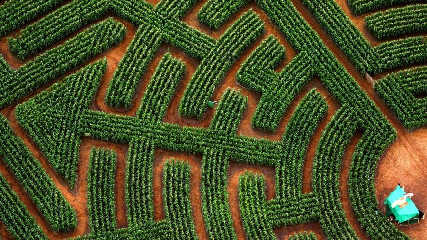 Il labirinto di Ribeauville